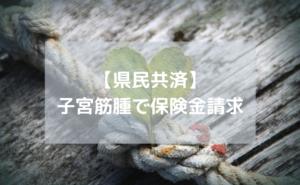 子宮筋腫で県民共済申請