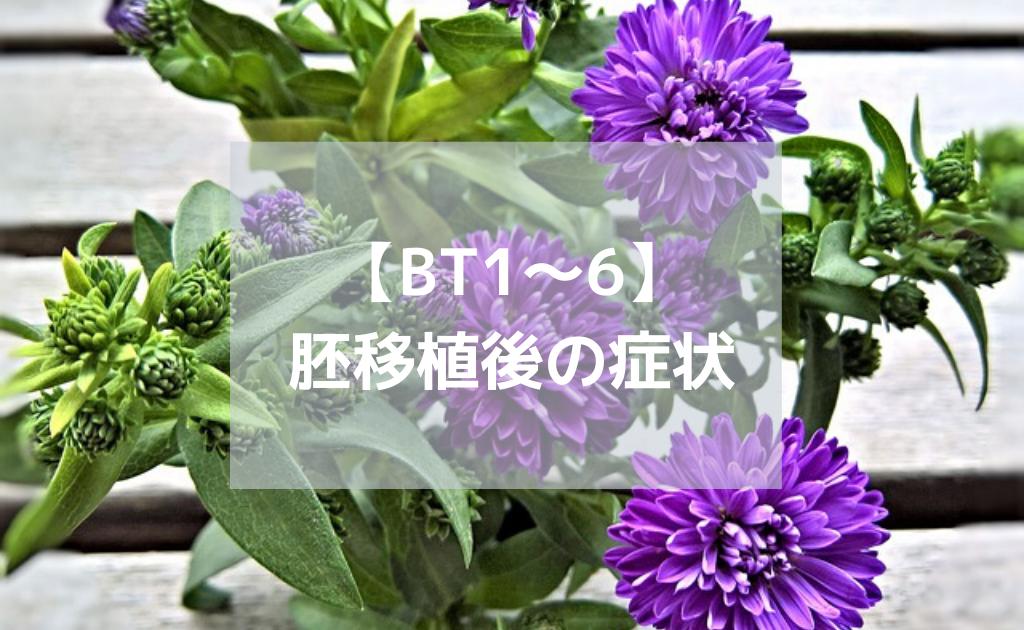 BT1-6胚移植後症状