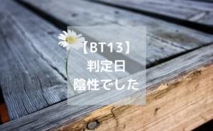 BT13判定日陰性