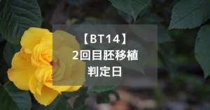 【BT14】2回目胚移植判定日
