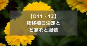 【D11・12】胚移植日決定とど忘れと服装