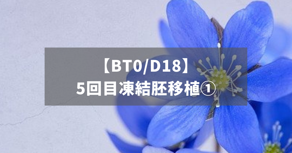 【BT0/D18】5回目凍結胚移植①