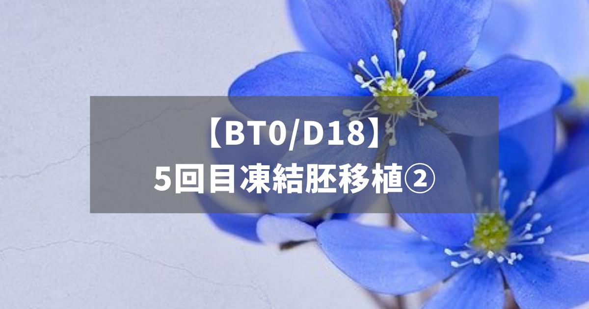 【BT0/D18】5回目凍結胚移植②