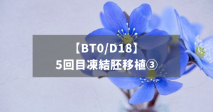 【BT0/D18】5回目凍結胚移植③
